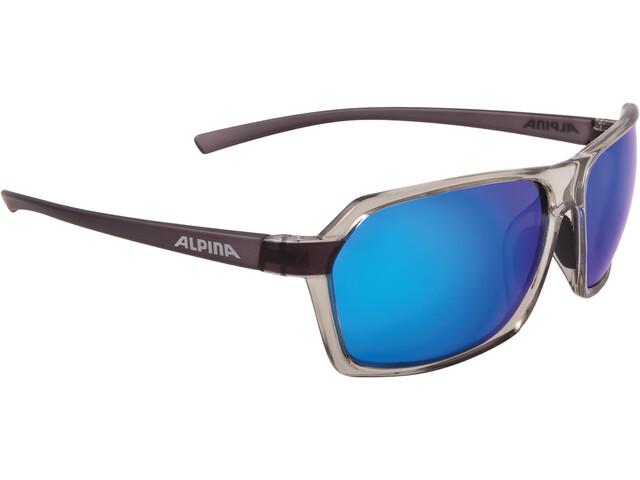 Alpina Finety P Cykelbriller grå (2019) | Briller